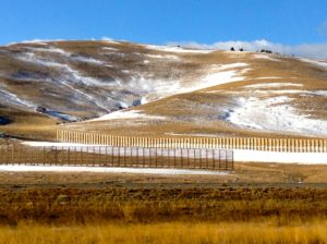 Snow fencing,  WY