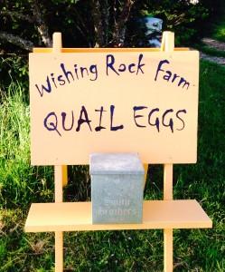 1Quail eggs sale